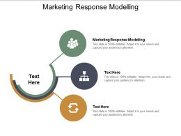 Marketing Response Modelling Ppt Powerpoint Presentation Infographic Template Cpb