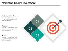 Marketing Return Investment Ppt Powerpoint Presentation Portfolio Example Introduction Cpb