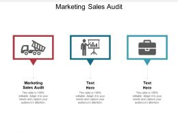 Marketing Sales Audit Ppt Powerpoint Presentation Ideas Templates Cpb