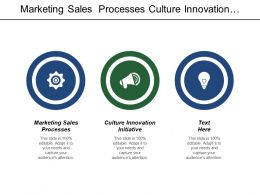 Marketing Sales Processes Culture Innovation Initiative Process Excellence