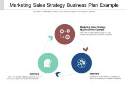 Marketing Sales Strategy Business Plan Example Ppt Powerpoint Presentation Model Templates Cpb