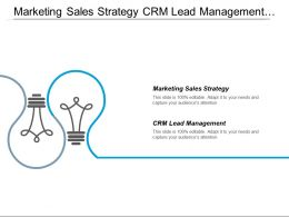 Marketing Sales Strategy Crm Lead Management Digital Marketing Cpb