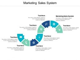 Marketing Sales System Ppt Powerpoint Presentation Pictures Introduction Cpb