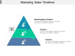 Marketing Sales Timelines Ppt Powerpoint Presentation Ideas Portrait Cpb