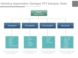 Marketing Segmentation Startegies Ppt Examples Slides