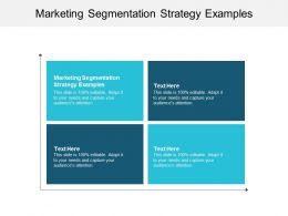 Marketing Segmentation Strategy Examples Ppt Powerpoint Presentation Ideas Cpb