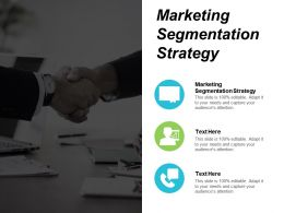 Marketing Segmentation Strategy Ppt Powerpoint Presentation Infographic Template Model Cpb