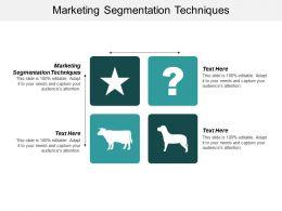 Marketing Segmentation Techniques Ppt Powerpoint Presentation Ideas Maker Cpb