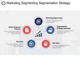 Marketing Segmenting Segmentation Strategy Definition Market Segment Analysis Cpb