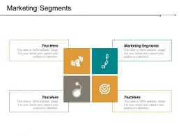 Marketing Segments Ppt Powerpoint Presentation File Portfolio Cpb