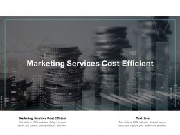 Marketing Services Cost Efficient Ppt Powerpoint Presentation File Sample Cpb