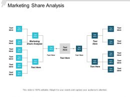 Marketing Share Analysis Ppt Powerpoint Presentation Pictures Cpb