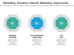 Marketing Solutions Internet Marketing Opportunity Enterprise Risk Management Cpb