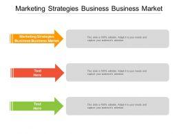 Marketing Strategies Business Business Market Ppt Powerpoint Presentation Deck Cpb
