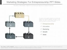 Marketing Strategies For Entrepreneurship Ppt Slides