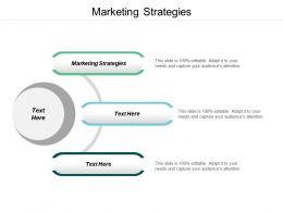 Marketing Strategies Ppt Powerpoint Presentation Icon Professional Cpb