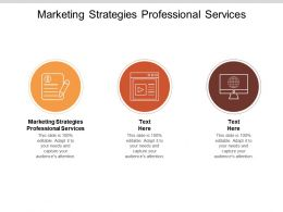 Marketing Strategies Professional Services Ppt Powerpoint Presentation Model Show Cpb