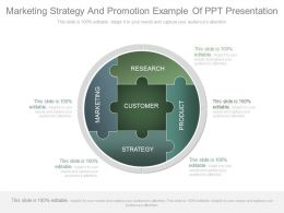 Marketing Strategy And Promotion Example Of Ppt Presentation