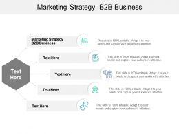 Marketing Strategy B2b Business Ppt Powerpoint Presentation Summary Sample Cpb