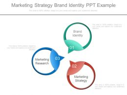 Marketing Strategy Brand Identity Ppt Example