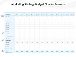 Marketing Strategy Budget Plan For Business