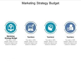 Marketing Strategy Budget Ppt Powerpoint Presentation Ideas Graphics Download Cpb