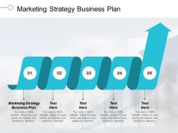 Marketing Strategy Business Plan Ppt Powerpoint Presentation Pictures Layout Ideas Cpb