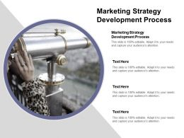 Marketing Strategy Development Process Ppt Powerpoint Presentation File Example Topics Cpb