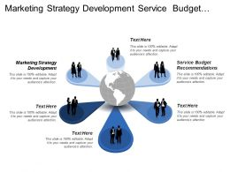 Marketing Strategy Development Service Budget Recommendations Strategy Adjustments