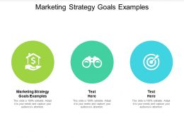 Marketing Strategy Goals Examples Ppt Powerpoint Presentation Layouts Themes Cpb