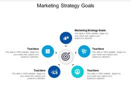 Marketing Strategy Goals Ppt Powerpoint Presentation Summary Slides Cpb