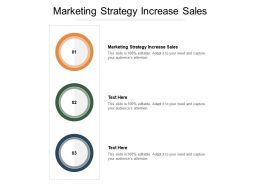 Marketing Strategy Increase Sales Ppt Powerpoint Presentation Summary Deck Cpb