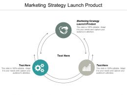 Marketing Strategy Launch Product Ppt Powerpoint Presentation Ideas Mockup Cpb