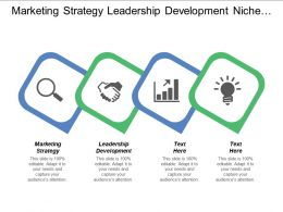Marketing Strategy Leadership Development Niche Market Strategy E Commerce Analytics Tools