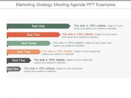 Marketing Strategy Meeting Agenda Ppt Examples