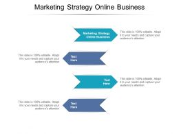 Marketing Strategy Online Business Ppt Powerpoint Presentation Professional Design Cpb