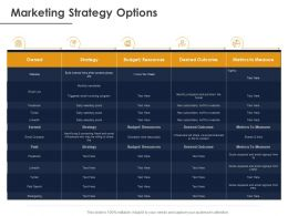 Marketing Strategy Options Ppt Powerpoint Presentation Portfolio File Formats