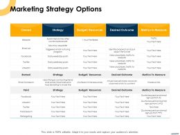 Marketing Strategy Options Ppt Powerpoint Presentation Professional Files