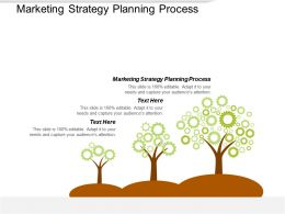 Marketing Strategy Planning Process Ppt Powerpoint Presentation File Designs Download Cpb