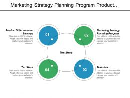 Marketing Strategy Planning Program Product Differentiation Strategy Diamond Model Cpb