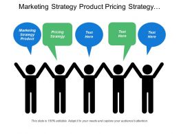 Marketing Strategy Product Pricing Strategy Promotional Strategy Distribution Plan