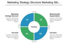 Marketing Strategy Structure Marketing Mix Segmentation Market Management Matrix Cpb