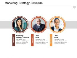 Marketing Strategy Structure Ppt Powerpoint Presentation File Diagrams Cpb