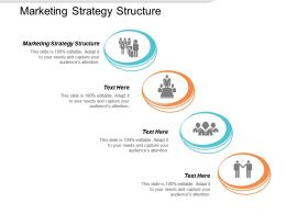 Marketing Strategy Structure Ppt Powerpoint Presentation Graphics Cpb