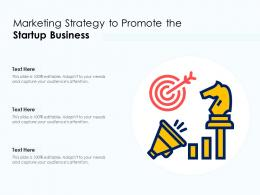 Marketing Strategy To Promote The Startup Business