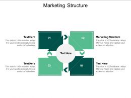 Marketing Structure Ppt Powerpoint Presentation Layouts File Formats Cpb