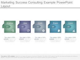 Marketing Success Consulting Example Powerpoint Layout