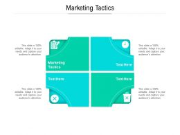 Marketing Tactics Ppt Powerpoint Presentation Gallery Introduction Cpb