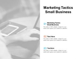 Marketing Tactics Small Business Ppt Powerpoint Presentation Pictures Cpb