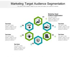 Marketing Target Audience Segmentation Ppt Powerpoint Presentation Ideas Graphics Example Cpb